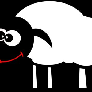 sheep1 Thumbnail