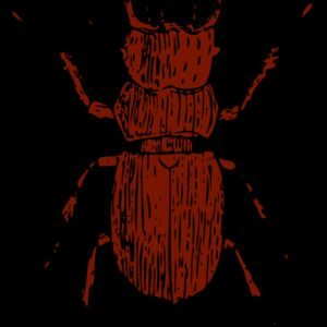 johnny automatic stag beetle Thumbnail