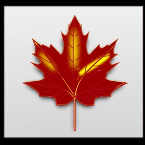 maple leaf  2  Thumbnail