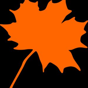 Maple leaf Thumbnail
