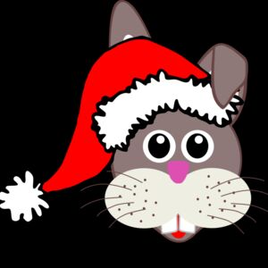Rabbit 001 Face Cartoon with Santa hat Thumbnail