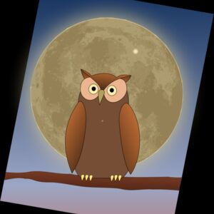 The Owl and The Moon Thumbnail