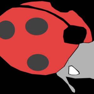 Machovka lady bug Thumbnail